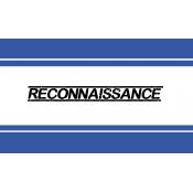 Reconnaissance  (17)